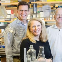 Researchers Timothy Blackwell, MD, left, Erin Plosa, MD, Roy Zent, MD, PhD, and colleagues are studying beta-1 integrin's role in normal lung function. (photo by Susan Urmy)